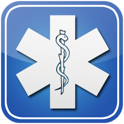 256x256 Star of life symbol button
